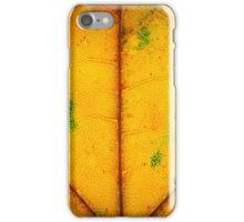Life Blood (Autumn Foliage IV) iPhone Case/Skin
