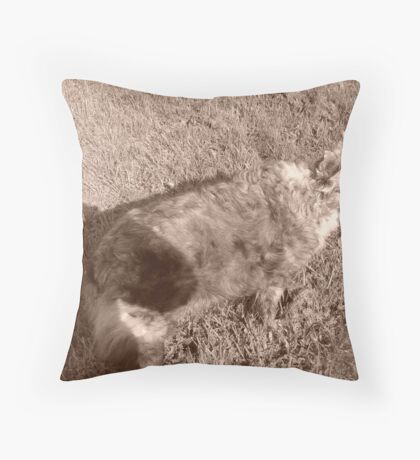 Me and My Best Friend  Throw Pillow