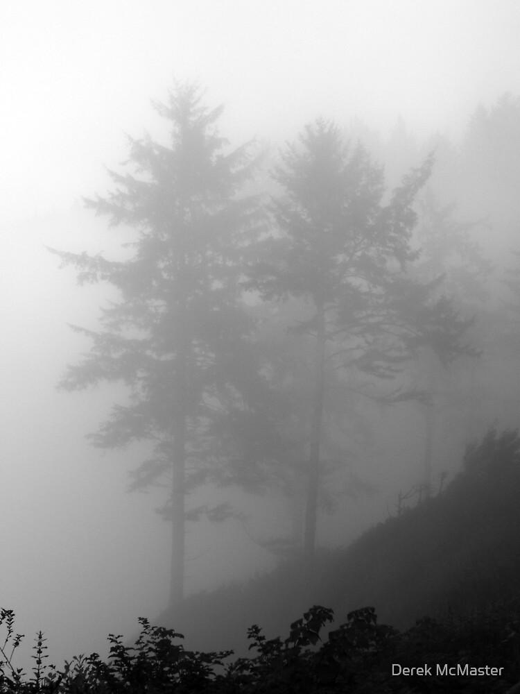 Trees in Fog 2 by Derek McMaster