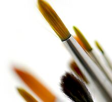 Paintbrushes by Elena Elisseeva