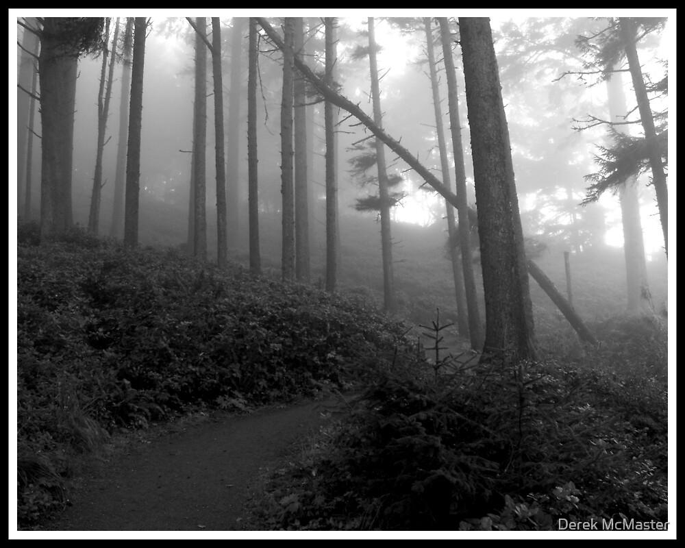 Trees in Fog 5 by Derek McMaster