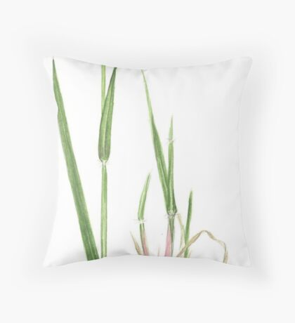 Yellow Foxtail - Setaria glauca Throw Pillow