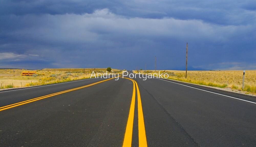 Road  by Andriy Portyanko