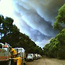 Bushfire  by Graham Houghton