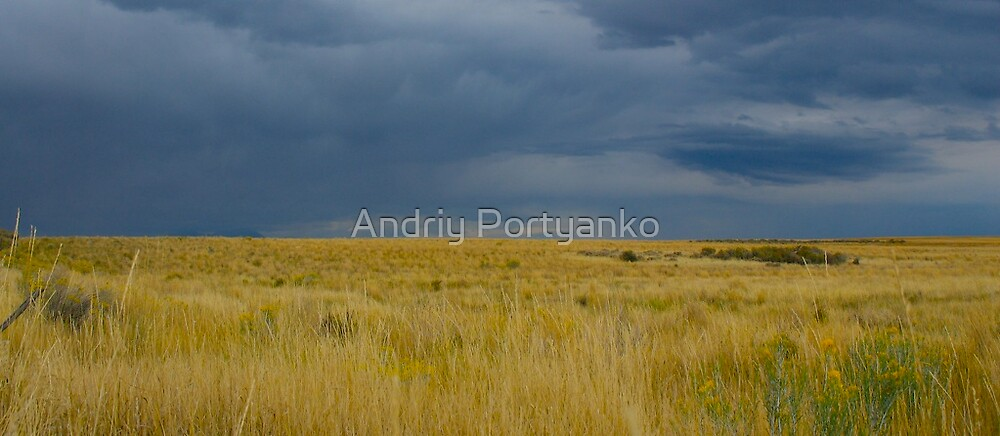 Yellow and Blue by Andriy Portyanko