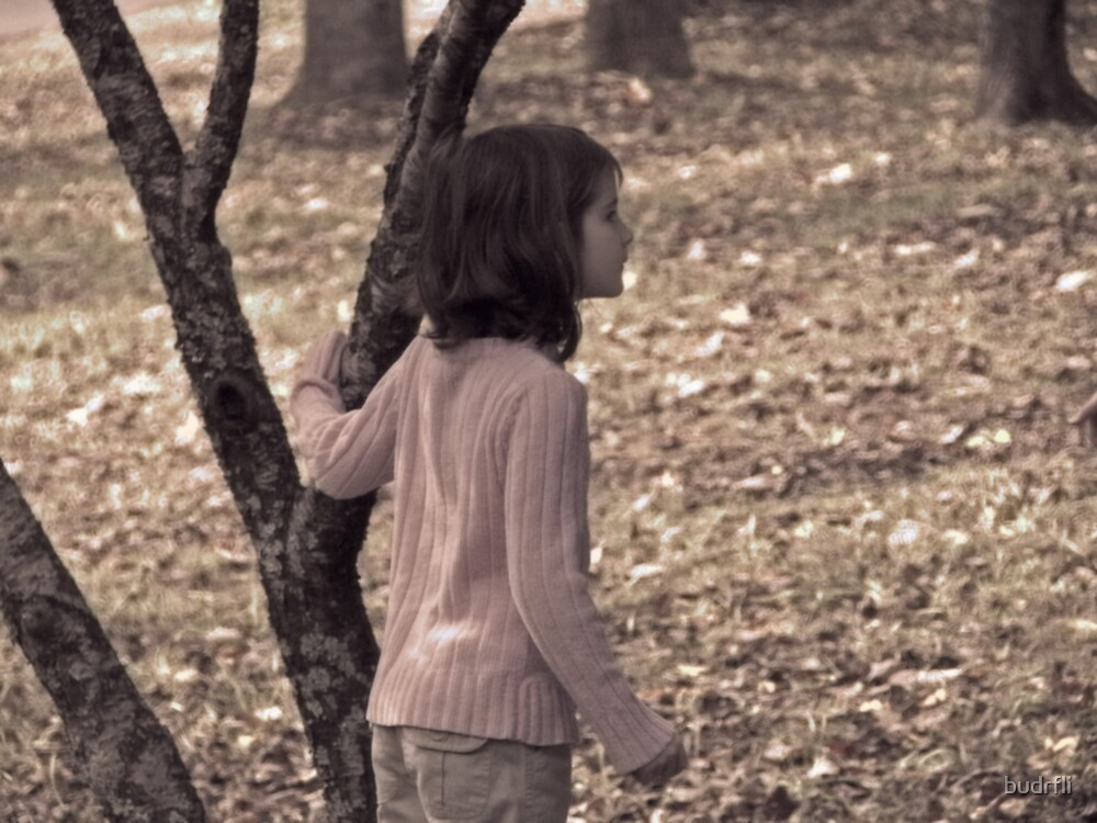 autumn wonder by budrfli