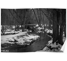 Country creek b/w Poster