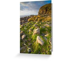 South Bruny National Park, Tasmania Greeting Card