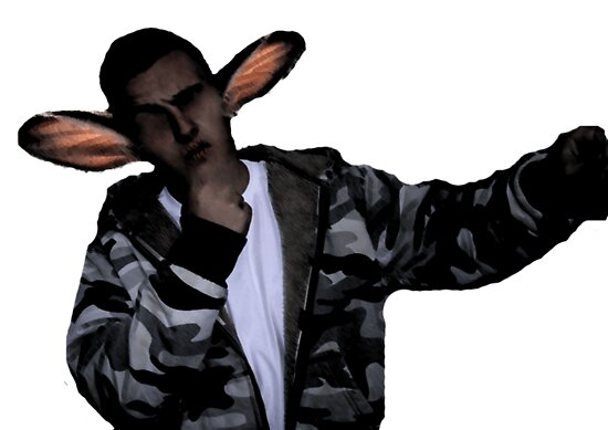 Rabbit by Conor  Logan