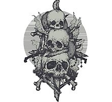3 Skulls Photographic Print