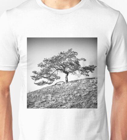 Pinus sylvestris Unisex T-Shirt