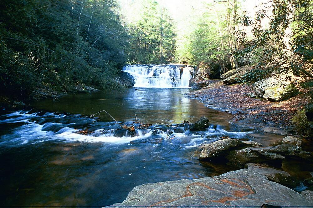 Dicks Creek by allenmay60