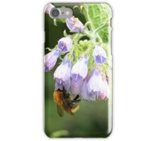 Bumble Bee in the Hollyhocks iPhone Case/Skin