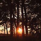 Sun's Last Glow by AbigailJoy