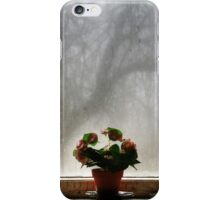 26.11.2014: Plastic Flowers at the Window I iPhone Case/Skin