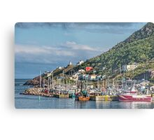 Fishing Harbour in Newfoundland, Canada Metal Print