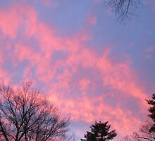 Fire Clouds as the Sun Sets by RPBURCH  by Richard  Burchell