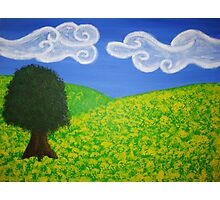Canola field and tree Photographic Print