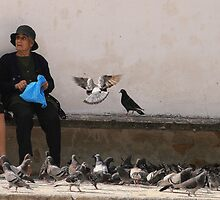 Feeding the Birds by Beamer