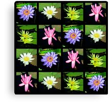 COLORFUL WATER LILY PHOTO COLLAGE Canvas Print