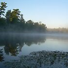 Misty Reflections 714 by NiftyGaloot
