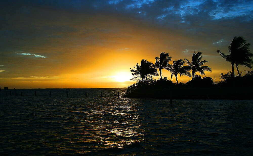 Tropical sunset by Martyn Starkey