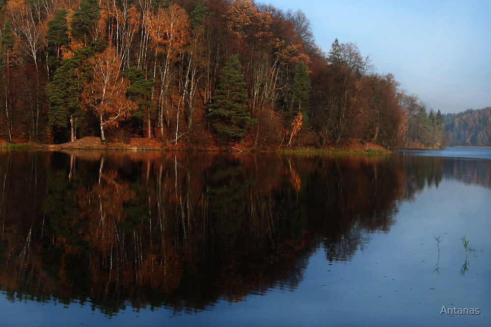 Silence in the autumn lake by Antanas