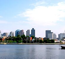 Boston skyline by Elena Elisseeva