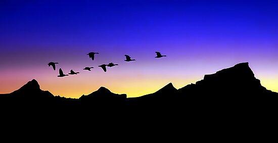 Twilight by Mundy Hackett