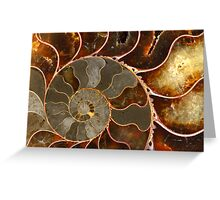 Ammolite Greeting Card