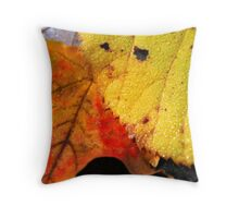 Autumn leaves macro Throw Pillow