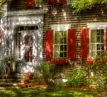Typical American house by Mike  Savad