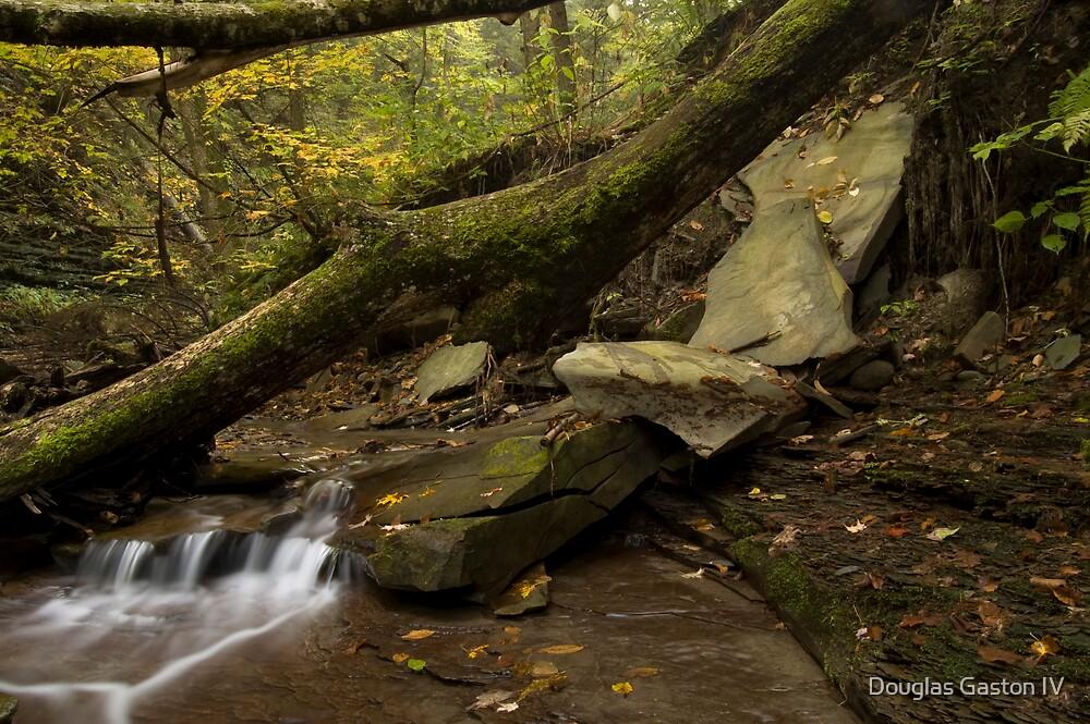 Small waterfall 1 by Douglas Gaston IV