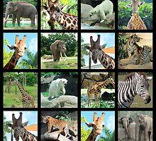 ANIMAL SAFARI PHOTO DESIGN by JLPOriginals