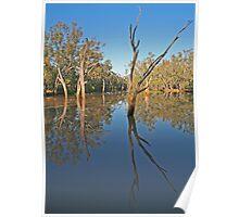 Creek at Nindigully, Qld Poster