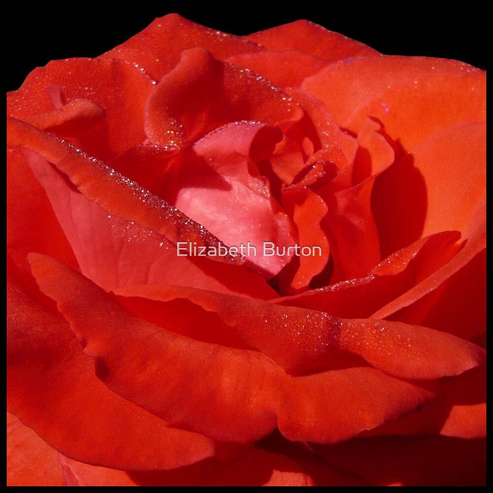 Big Red by Elizabeth Burton