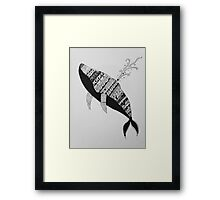 Abstract  Ink Drawn Whale Framed Print