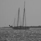 on the water by randi1972