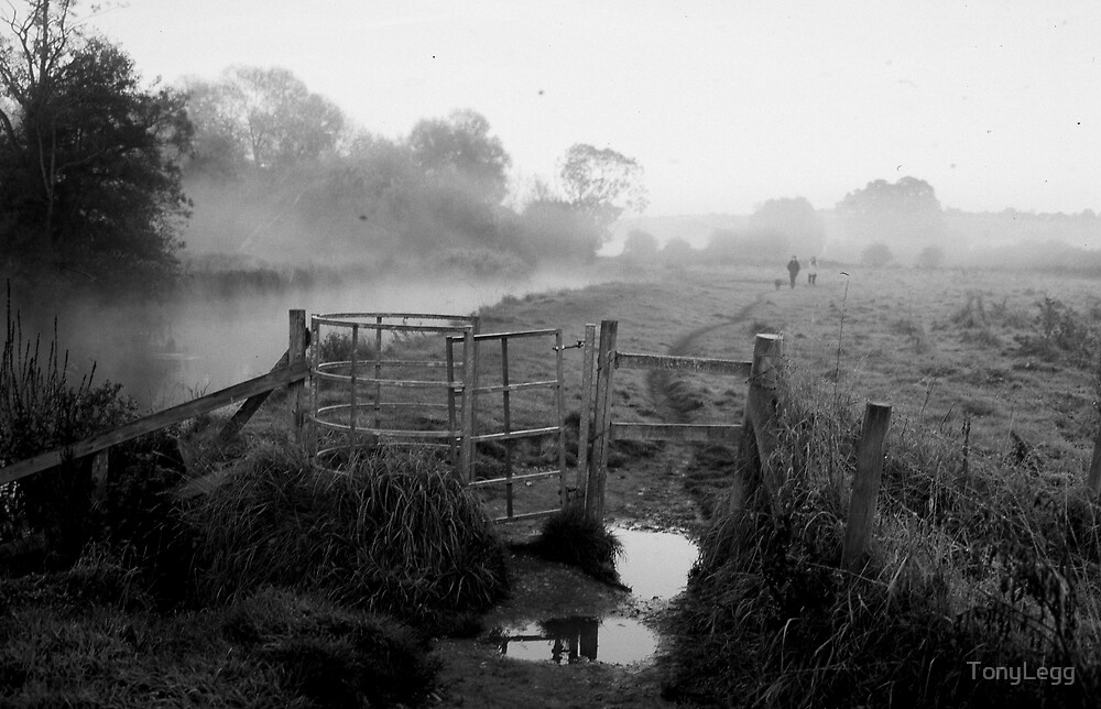 Before Dawn  by TonyLegg