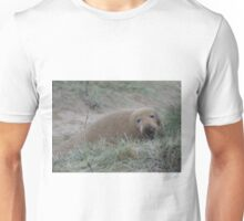 Sandy grey seal Unisex T-Shirt