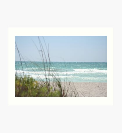 gulf of mexico Art Print