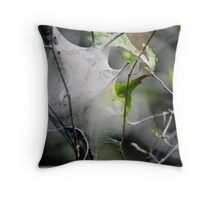 Silk Throw Pillow