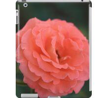 Pink Elegance iPad Case/Skin