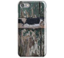 Weathered door hinge iPhone Case/Skin