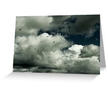 White clouds and Sea Gulls Greeting Card