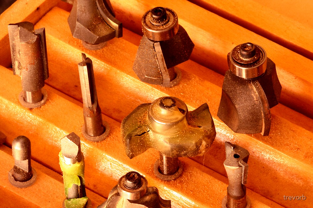 Router Bits. by trevorb