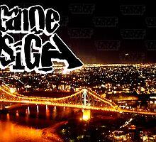 scanoe.dsign x story bridge by SCANOE