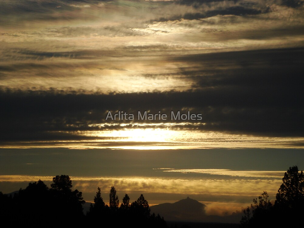 Tainted Sky at Twilight by Arlita Marie Moles