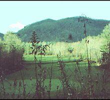 MOUNTAIN PLEATEAU by JOHNNYC