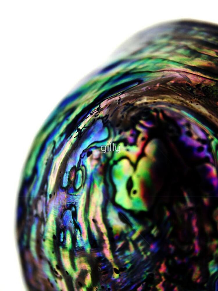 Paua by Gill Duncan
